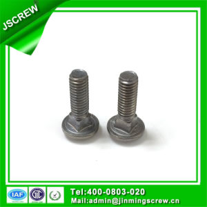 Stainless Steel Flat Head Carriage Bolt M6 pictures & photos