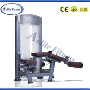 Commercial Fitness Equipment of Prone Leg Curl pictures & photos