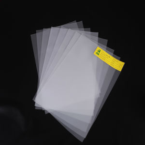 Polycarbonate Printing Film pictures & photos