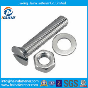 Stainless Steel Slotted Drivers Bolt & Nut pictures & photos