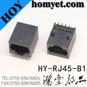 Professional Manufacturer RJ45 Female Connector/RJ45 Connector (HY-RJ45-B1) pictures & photos