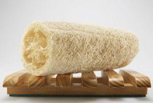 Shower Luffa Sponge /Loofah Sponge for Bathroom pictures & photos