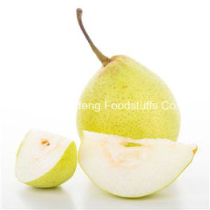 Fresh Ya Pear pictures & photos