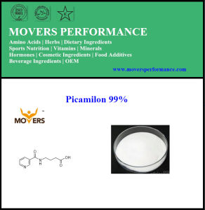 Hot Selling Nutrition Supplement Picamilon 99% pictures & photos