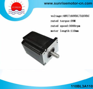 110bl3a110 BLDC Motor/Electric Motor/DC Motor/Brushless DC Motor BLDC Motor pictures & photos