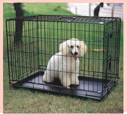 Pet Cage And Other Pet Products pictures & photos