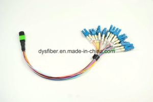 MPO-LC 24f Fanout Patchleads, Singlemode pictures & photos