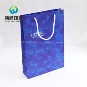 Eco-Friendly Paper Printing Gift Bag for Advertisement Promotion pictures & photos