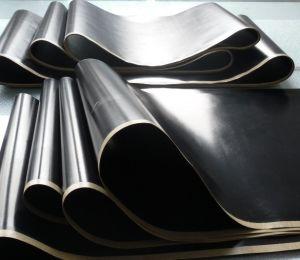 PTFE Seamless Heat Resistant Conveyor Belt pictures & photos