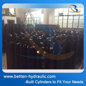30 Ton Hydraulic Oil Cylinder Manufacturer pictures & photos