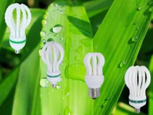 CFL Bulb 125W 150W Lotus 3000h/6000h/8000h Energy Saving Lamps Down Price pictures & photos