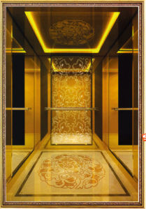 Golden Mirror Etched Stainless S. S Commercial Lift Elevator pictures & photos