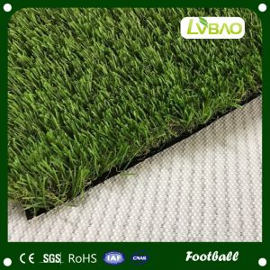 Monofilament Artificial Grass for Football and Soccer pictures & photos