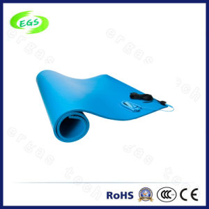 Excellent Quality Antistatic ESD Table Mat From China Factory pictures & photos