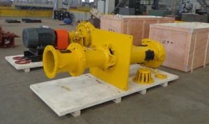 Metal and Rubber Waimans Vertical Slurry Pumpbv (R) pictures & photos