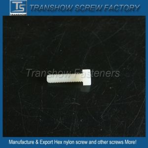 China Manufacturer Supply Plastic White Colour Hex Nylon Set Screw pictures & photos