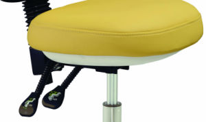 New Design Dental Chair Assistant Stools pictures & photos