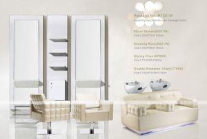 Popular High Quality Salon Furniture Shampoo Barber Salon Chair (P7001W)