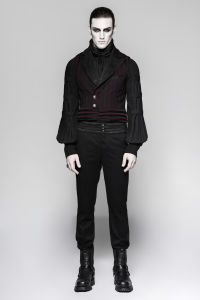 Western Styles Velvet Collar Short Minisuits Men Striped Waistcoats (Y-743) pictures & photos