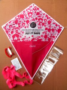 Promotional 170T Polyester Diamond Kites (PM155) pictures & photos