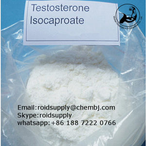 Fast Shipping Good Price 99% Anabolic Steroids Powder Testosterone Isocaproate pictures & photos