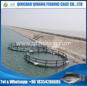 Fish Cage Farm Floating, HDPE Fish Cage Net pictures & photos