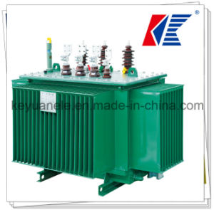 10kv/20kv/35kv Winding Coil Oil-Immersed Power Transformer pictures & photos