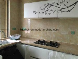 Best Kitchen Designs pictures & photos