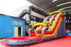 Palm Tree Inflatable Water Slide with Pool Chsl525 pictures & photos