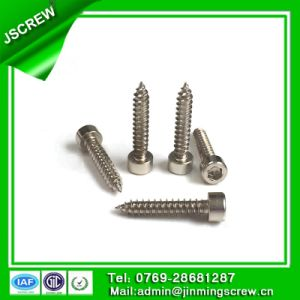 8mm Socket Cap Head Stainless Steel Self Tapping Screw for Bike pictures & photos