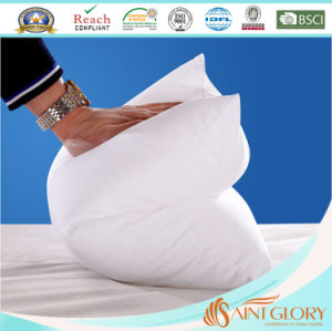 20*30 Inch Cheap Polyester Cushion Pillow pictures & photos