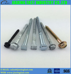 Square Head Screw (M10X120) pictures & photos