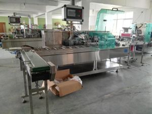 Automatic Multi-Bags Milk Tea, Biscuit, Wafer Mini Pack Cartoning Machine pictures & photos