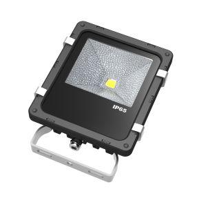 10W 20W 30W 50W 12 Volt LED Flood Lights pictures & photos