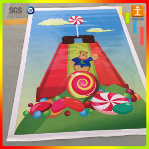 Advertising Printing PVC Flex Banner pictures & photos