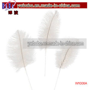 Wedding Jewelry Wedding Supplies White Ostrich Feathers (W1006A) pictures & photos