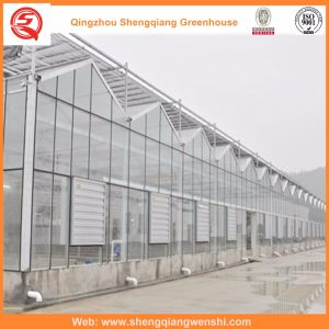 Agriculture Multi Span Glass Green House for Vegetables pictures & photos