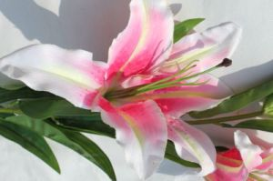 Real Touch Pink Silk Artififcial Flowers Fake Lily for Home Wedding Decoration pictures & photos
