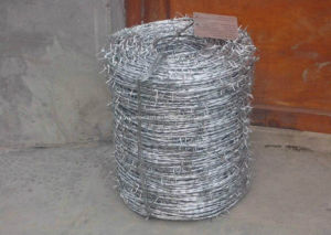 Barbed Wire Bwg14*Bwg14 Hot Sale with ISO9001 Certification pictures & photos
