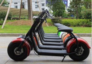 New Arriver Electric City Scooter with Long Mileage& Two Fat Wheels