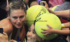 Customized Size Star Signature Ball pictures & photos