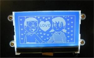Mono LCD Display pictures & photos