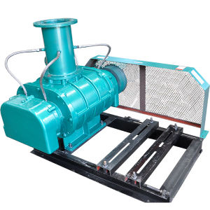 Roots Type Biogas Booster Pump