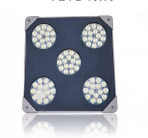 15W5 High Power LED Explosion-Proof Light pictures & photos