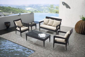 Outdoor Furniture Outdoor Sofa Set (LN-049)