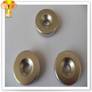 Screw Hole Ring Permanent Magnet