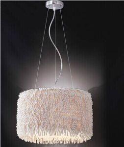 2014 Fashion Contemporary Pendant Lamp