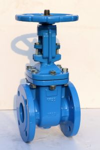 DIN Metal Seal F4/F5 OS&Y Gate Valve pictures & photos