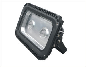 (100W) LED Flood Light LED Floodlight LED Light pictures & photos