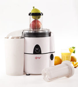 Geuwa Power 450W Fruit and Vegetable Centrifugal Juicer Kd-383 pictures & photos